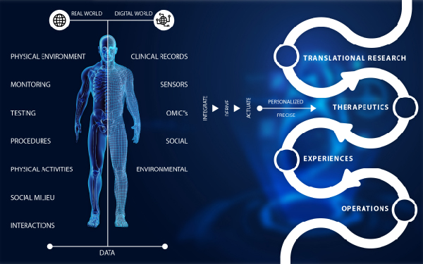 Patient Diagnosis and Treatment Based on digital Twin In Healthcare